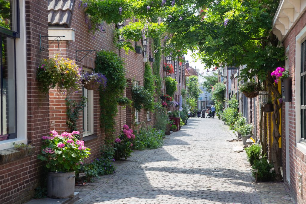 Flower covered cobblestone street in Alkmaar Netherlands