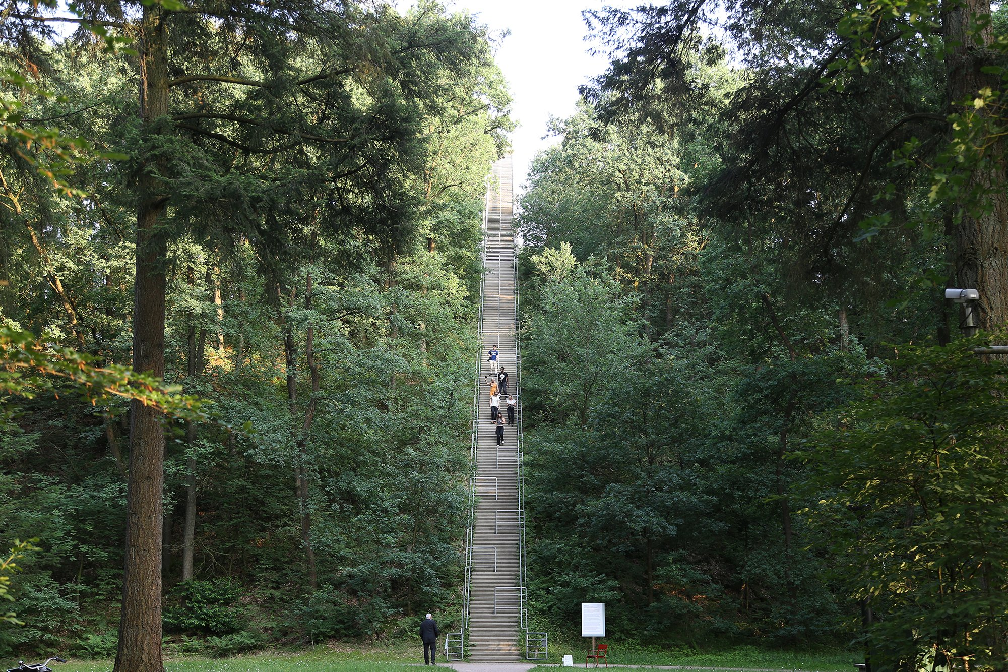 Long stairway leading into the sky among the trees of the sculpture park of Kroller Muller Museum in De Hoge Veluwe