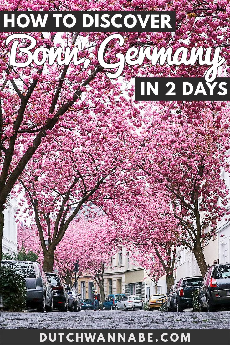 15 Exciting Things To Do In Bonn Germany In 2 Days