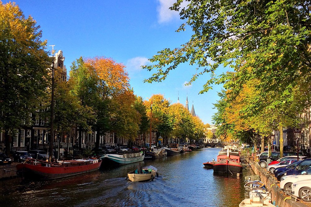 Amsterdam in autumn covered in yellow colors and orange trees at the canals