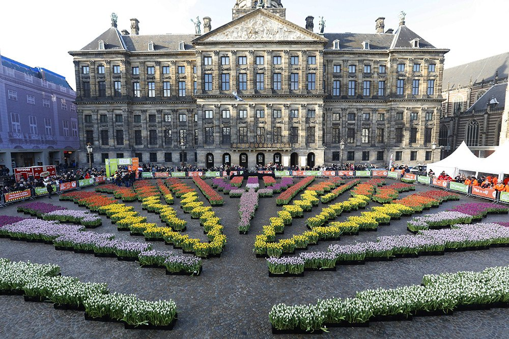 National Tulip Day in Amsterdam: tulips on the Dam square before the Royal Palace