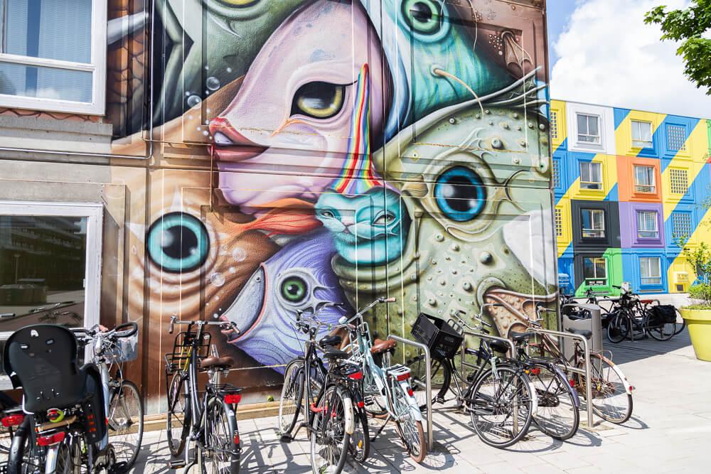 Alternative Amsterdam street art tour of the H-buurt