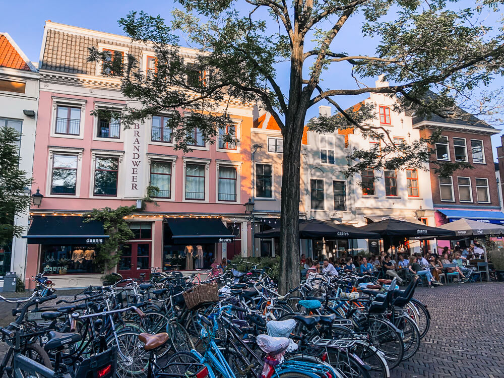 Things to do in Utrecht: explore the local food scene