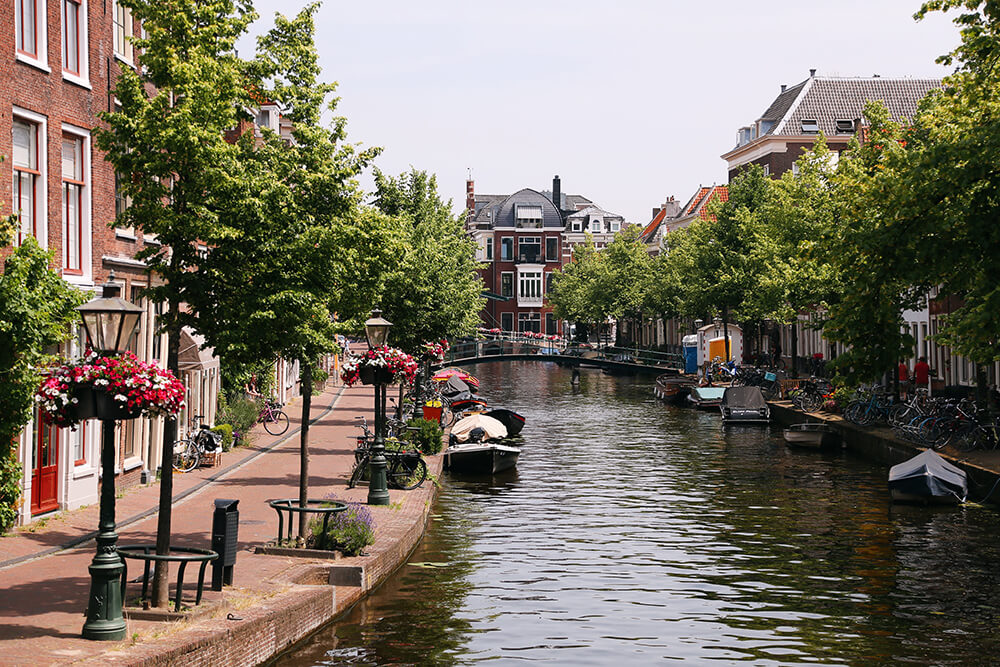 15 Cool Things To Do In Leiden On A Weekend Dutch Wannabe