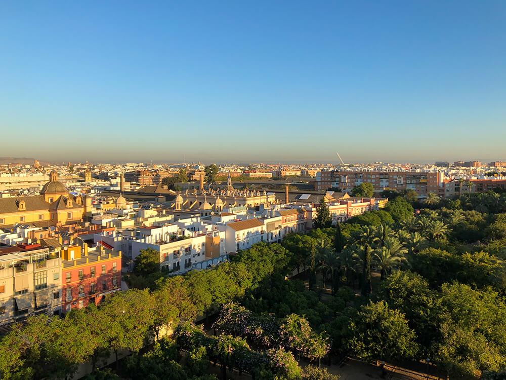 Seville morning views from Hotel Sevilla Center